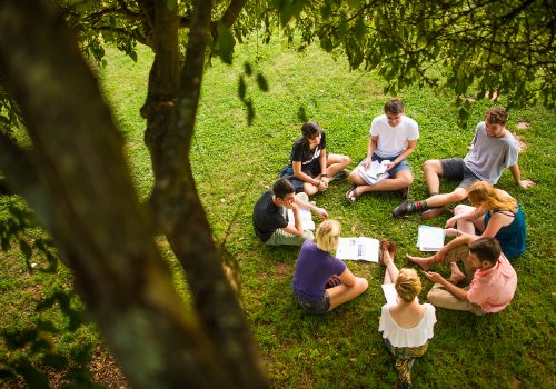 A group of UNC Asheville Student sitting in a circle under a tree
